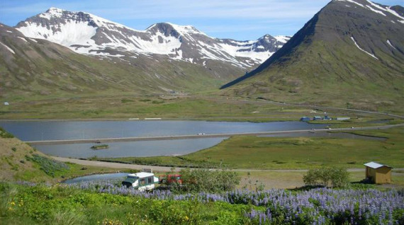 Big Boli camp site in Siglufjordur